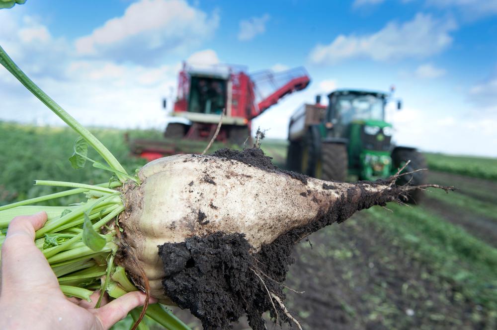 Ervaren uitgevers met achtergrond in de agrarische sector kopen agricluster